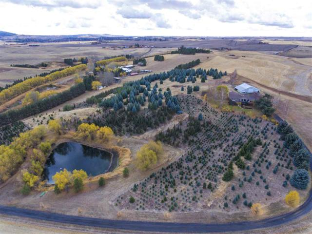 3123 West Twin Road, Moscow, ID 83843 (MLS #98712862) :: Juniper Realty Group