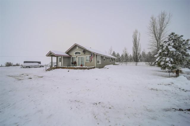 13748 Hwy 55, Mccall, ID 83638 (MLS #98714168) :: Boise Valley Real Estate