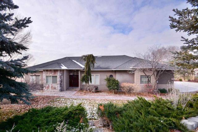 10305 Pheasant Lane, Nampa, ID 83686 (MLS #98714266) :: Full Sail Real Estate