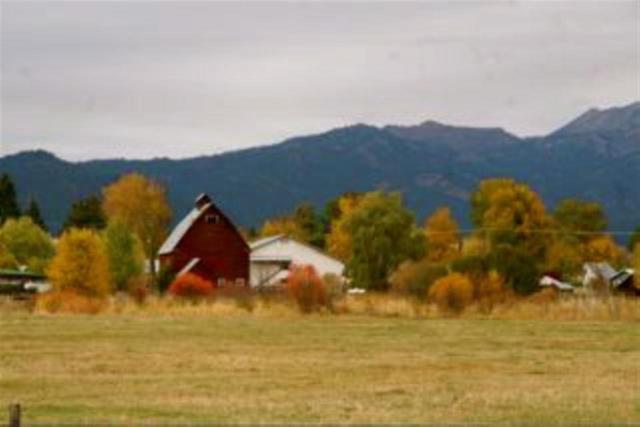 0 Cornucopia Highway, Halfway, OR 97834 (MLS #98715226) :: Boise River Realty
