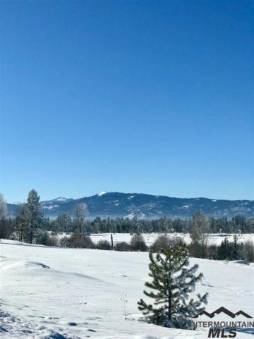 125 E Lake Fork Road, Mccall, ID 83638 (MLS #98716764) :: Build Idaho