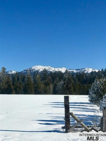 13773 Raptor Loop, Mccall, ID 83638 (MLS #98716770) :: Build Idaho