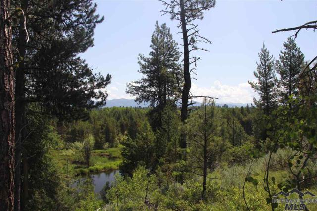 Lot 17 Bitterroot Ct, Mccall, ID 83638 (MLS #98718671) :: Boise Valley Real Estate