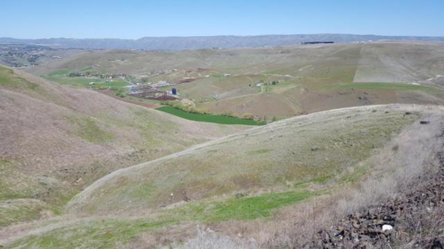 NKA River Rock Dr. Lot 7, Lewiston, ID 83501 (MLS #98719386) :: Idahome and Land