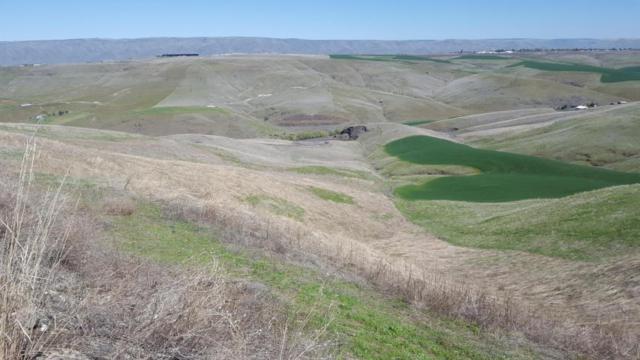NKA River Rock Dr. Lot 8, Lewiston, ID 83501 (MLS #98719387) :: Idahome and Land