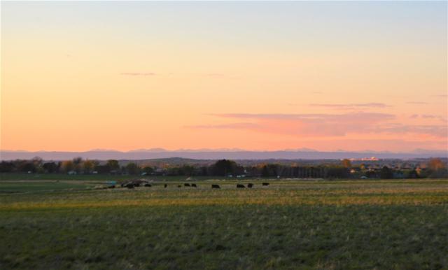 3950 N 2700 E, Twin Falls, ID 83301 (MLS #98720468) :: Bafundi Real Estate