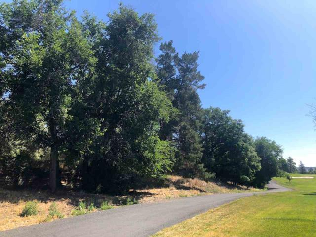 30AB Riverside Ln, Buhl, ID 83316 (MLS #98720622) :: Jon Gosche Real Estate, LLC
