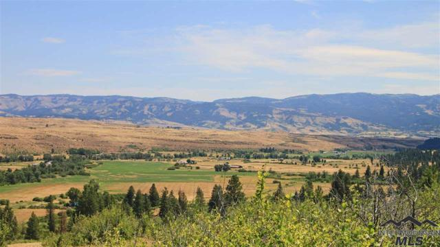 2549 Council Cuprum Road, Council, ID 83612 (MLS #98720801) :: Jon Gosche Real Estate, LLC