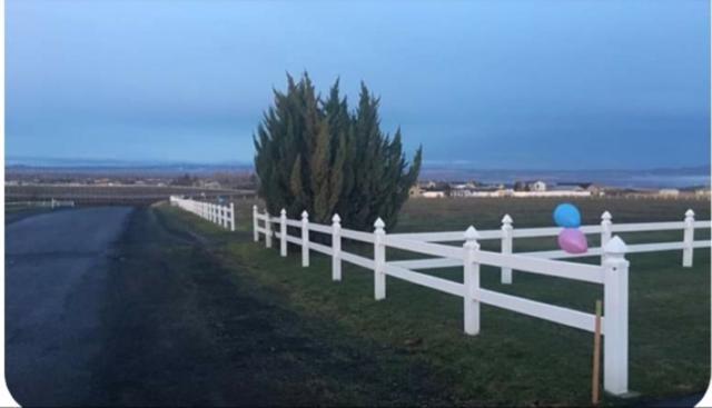 LOT 1 BLK 1 Eagles Pointe Boulevard, Lewiston, ID 83501 (MLS #98721004) :: Bafundi Real Estate