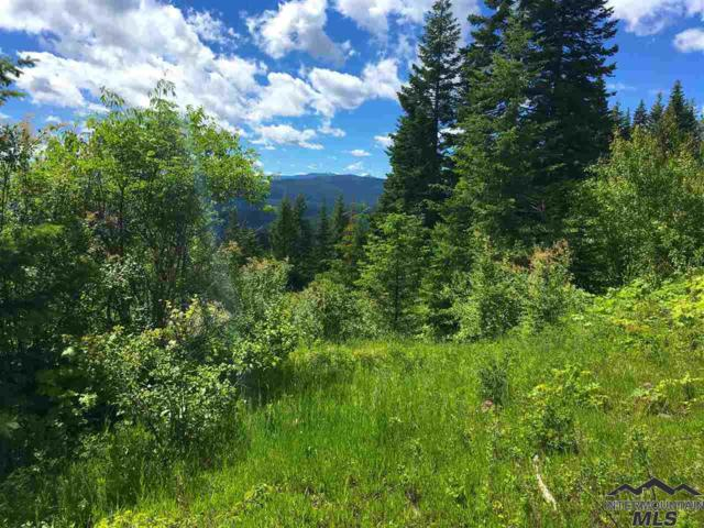 46 acres Cove Road, Grangeville, ID 83530 (MLS #98721054) :: Jon Gosche Real Estate, LLC