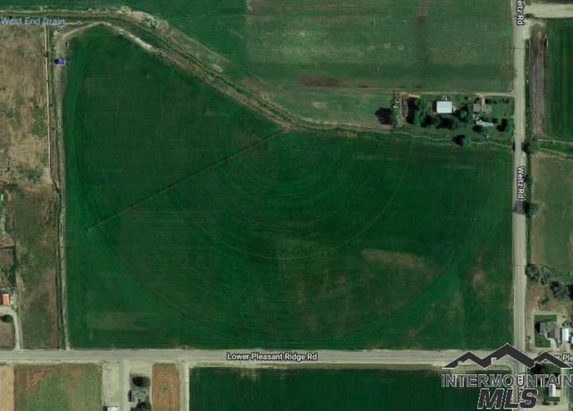 18542 Lower Pleasant Ridge Road, Caldwell, ID 83607 (MLS #98722210) :: New View Team