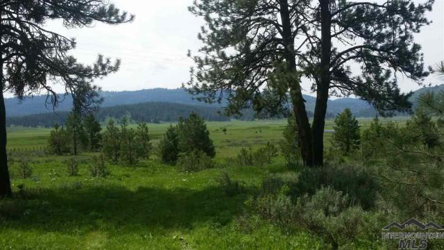 Lot 14 Wilderness Lake Rd, High Valley, ID 83611 (MLS #98723638) :: Full Sail Real Estate
