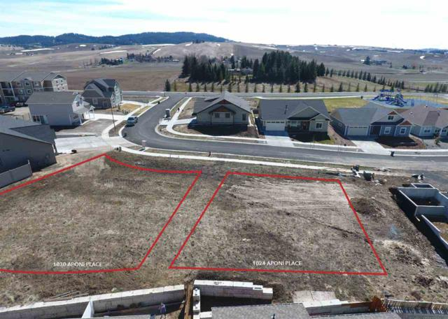 1024 Aponi Place, Moscow, ID 83843 (MLS #98724358) :: New View Team