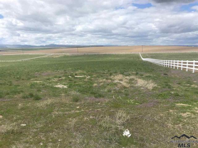 8848 Deersky Ranch Trail, Nampa, ID 83709 (MLS #98725649) :: New View Team
