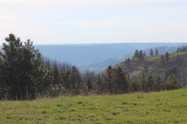 000 Shenandoah Road, Kamiah, ID 83536 (MLS #98726292) :: Givens Group Real Estate