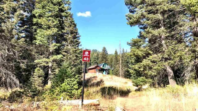 730 Whitewater, Donnelly, ID 83615 (MLS #98727082) :: Boise River Realty