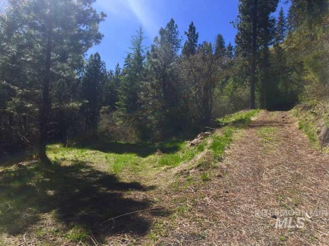 63 Hammer Creek Rd, White Bird, ID 83554 (MLS #98727333) :: Boise River Realty