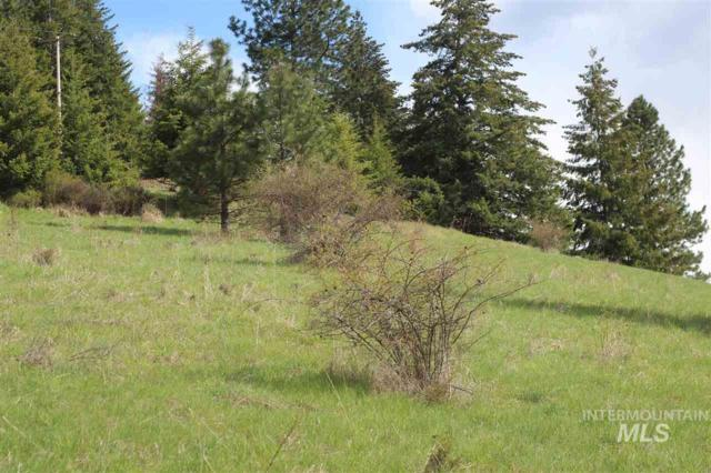 Lot 25 Shenandoah Drive, Kamiah, ID 83536 (MLS #98727484) :: Legacy Real Estate Co.