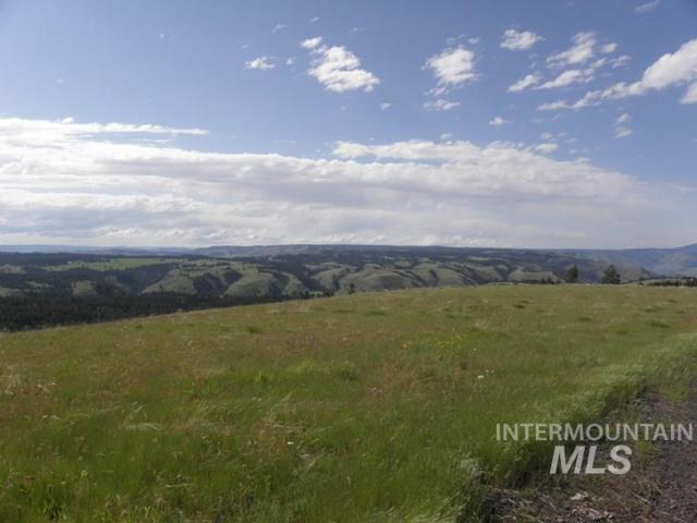 37 Pilgrim Ridge Road, White Bird, ID 83554 (MLS #98728120) :: Boise River Realty