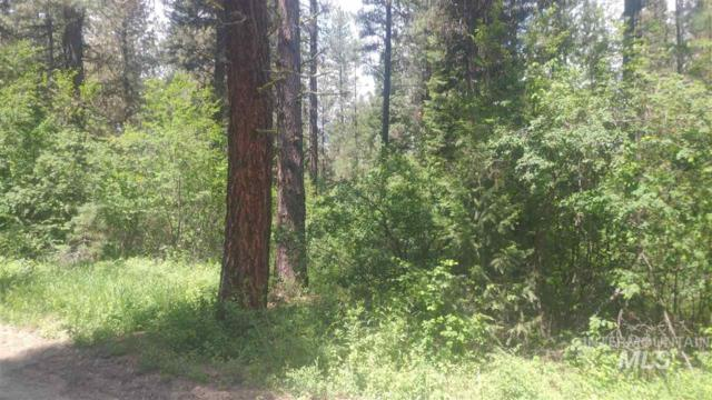 Scriver Woods, Garden Valley, ID 83622 (MLS #98728557) :: Jon Gosche Real Estate, LLC