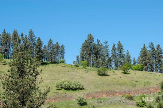 Lot 4 Amos Bench Road, Lenore, ID 83541 (MLS #98728639) :: New View Team