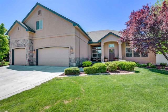 2917 S Beartooth Place, Meridian, ID 83642 (MLS #98728663) :: New View Team