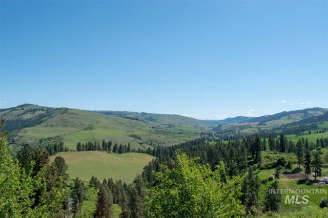 NKA Amos Bench Rd, Lenore, ID 83544 (MLS #98728700) :: New View Team