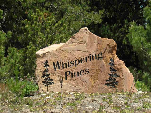TBD Placer Place- Lot 12 Block 2 Whispering Pines #3, Cascade, ID 83611 (MLS #98729273) :: Boise River Realty