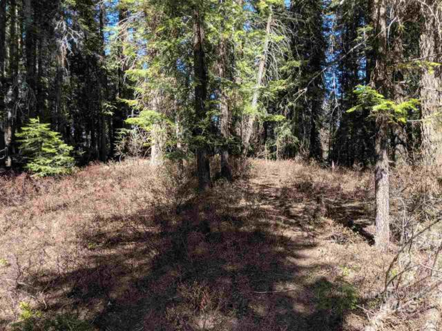 TBD Plymouth Rd, Mccall, ID 83638 (MLS #98729335) :: Juniper Realty Group
