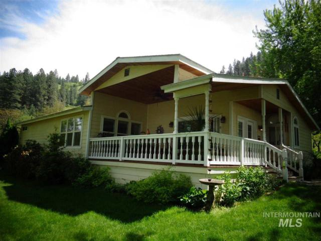 33328 Peach Lane, Lenore, ID 83541 (MLS #98729501) :: Jon Gosche Real Estate, LLC