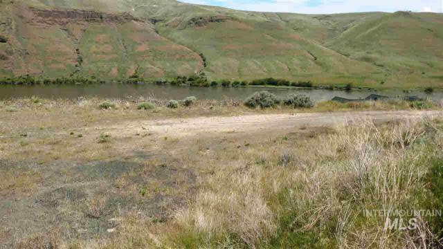 1491 River Ridge Dr, Asotin, WA 99402 (MLS #98729518) :: Juniper Realty Group