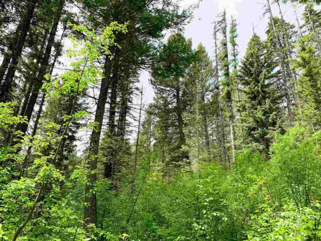 1785 Finch Trail, Donnelly, ID 86315 (MLS #98732978) :: Bafundi Real Estate