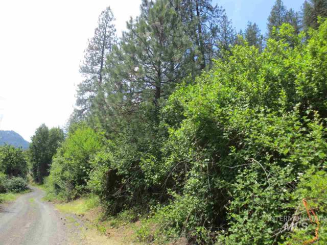TBD Forsman Road, Orofino, ID 83544 (MLS #98733300) :: Boise River Realty