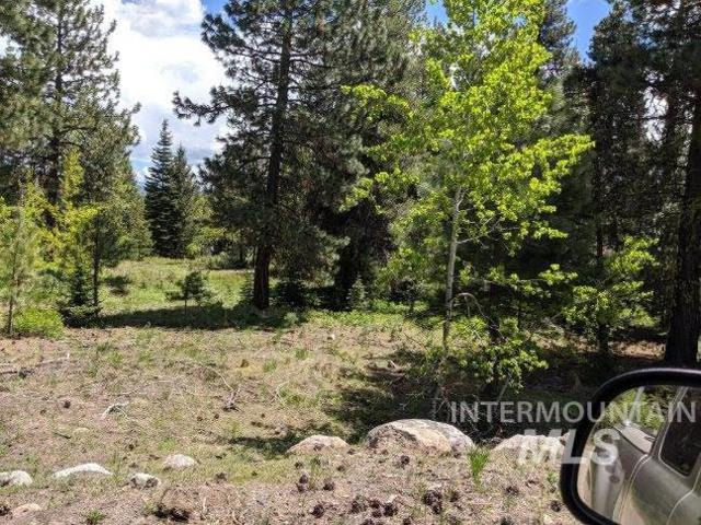 1785 Warren Wagon Rd, Mccall, ID 83638 (MLS #98733315) :: Alves Family Realty
