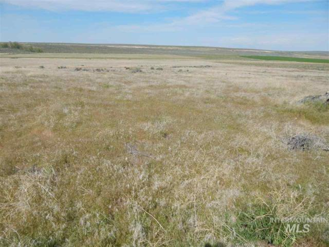 Bare Land, Hollister, ID 83301 (MLS #98733358) :: Bafundi Real Estate
