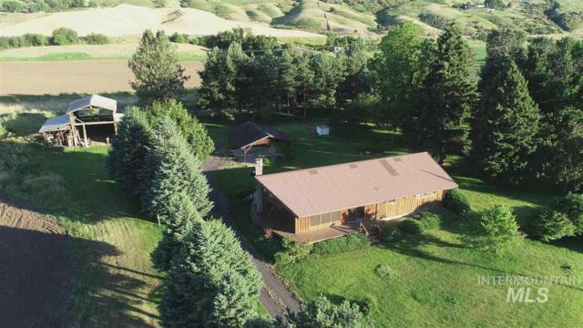 23699 Spalding Mill Road, Lapwai, ID 83540 (MLS #98733795) :: Bafundi Real Estate