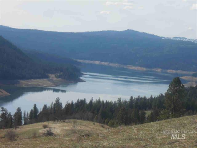 TBD Carey Drive, Orofino, ID 83544 (MLS #98734876) :: Boise River Realty