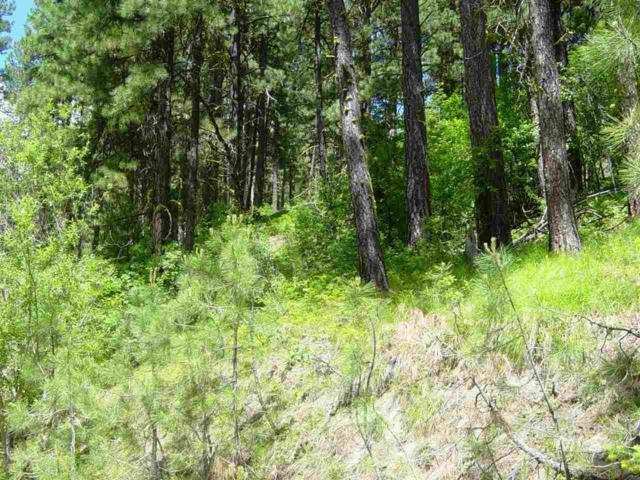 472 Collier View Road, Cascade, ID 83611 (MLS #98734974) :: Epic Realty