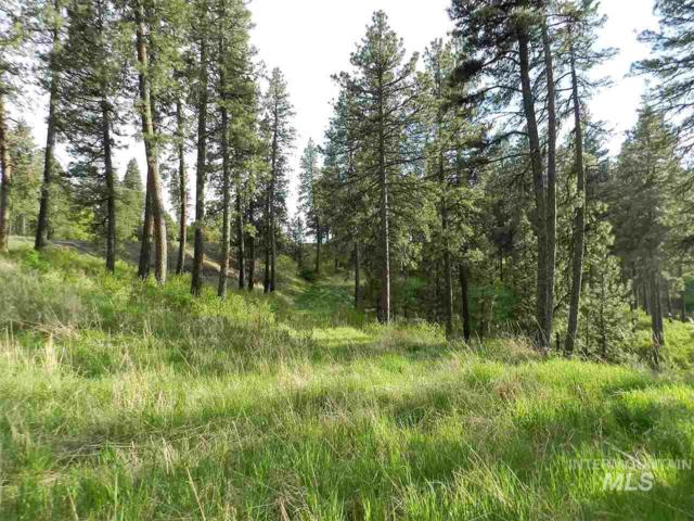 TBD Highway 95, Viola, ID 83872 (MLS #98735809) :: Beasley Realty