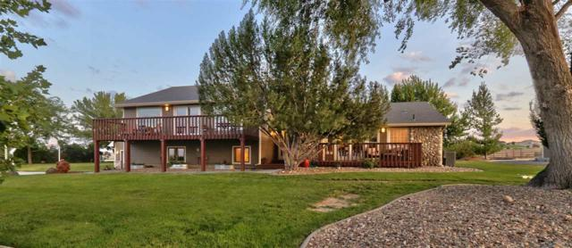 12303 Deer Flat Road, Nampa, ID 83686 (MLS #98735820) :: Full Sail Real Estate