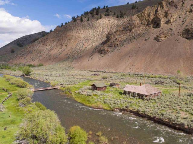 6728 N Copper Basin, Mackay, ID 83251 (MLS #98736263) :: Jon Gosche Real Estate, LLC