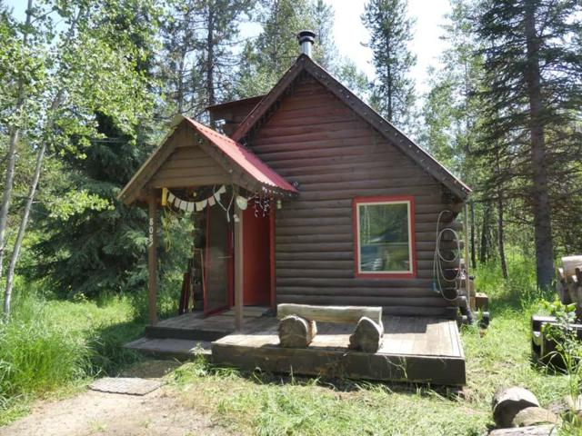 808 Hayes Street, Mccall, ID 83638 (MLS #98736359) :: Team One Group Real Estate