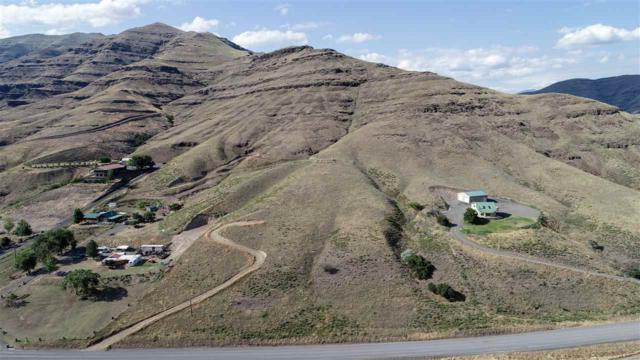 NNA Grande Ronde Road, Asotin, WA 99402 (MLS #98736414) :: Jon Gosche Real Estate, LLC