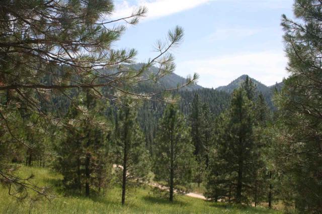 Lot 37 Frazier Creek Road, Garden Valley, ID 83622 (MLS #98736628) :: Adam Alexander
