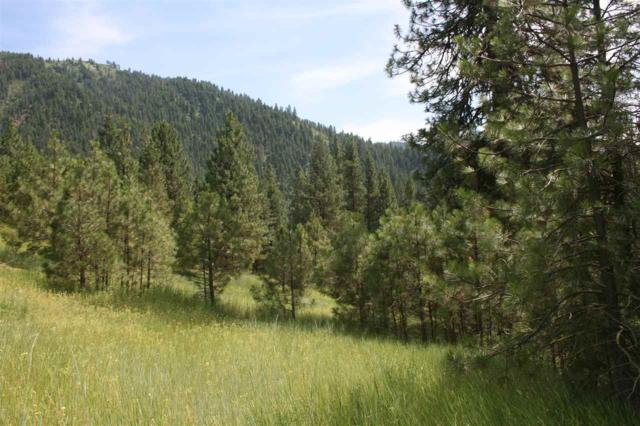 Lot 29 Frazier Creek, Garden Valley, ID 83622 (MLS #98736631) :: Full Sail Real Estate