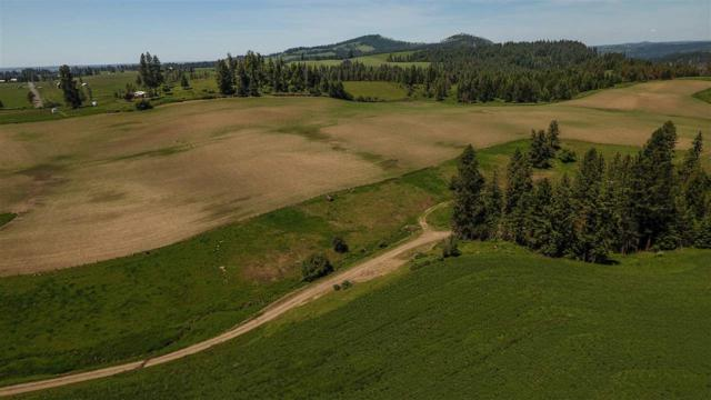 TBD Harrisburg Rd, Kamiah, ID 83536 (MLS #98736782) :: Team One Group Real Estate