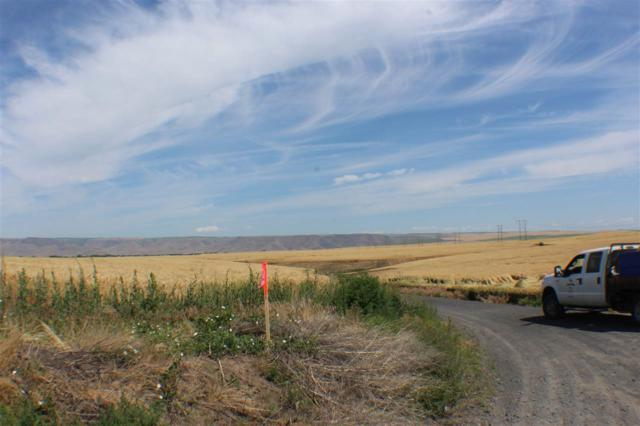 Lot 4 Block 112, Lewiston, ID 83501 (MLS #98737031) :: Epic Realty