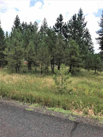 TBD Columbine Drive, New Meadows, ID 83654 (MLS #98737720) :: Alves Family Realty