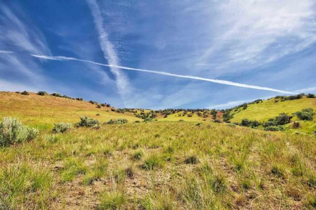 Lot 14 Hidden Hollow, Emmett, ID 83617 (MLS #98737781) :: Boise River Realty