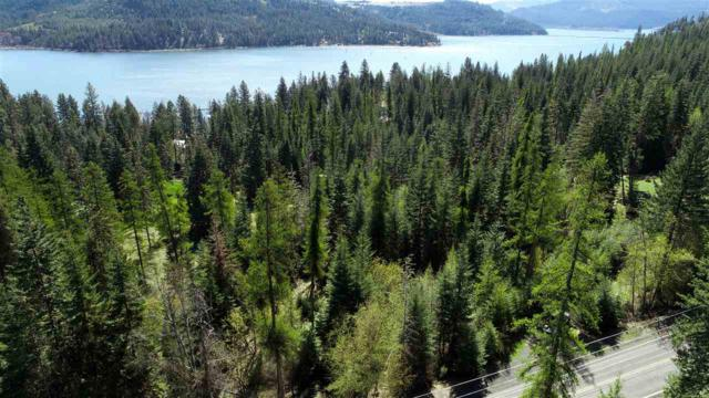 29704 Bella Vista, Worley, ID 83876 (MLS #98738438) :: Boise River Realty
